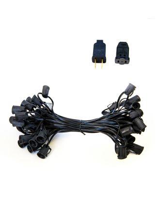 Black C9 Light Strand SPT1